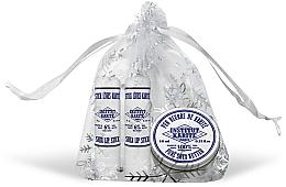 Parfumuri și produse cosmetice Set - Institut Karite (butter/10ml + lipstick/2x4g)