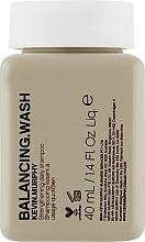 Parfumuri și produse cosmetice Șampon pentru păr vopsit, pentru utilizare zilnică - Kevin.Murphy Balancing.Wash (mini)