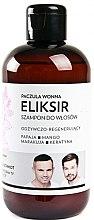 """Parfumuri și produse cosmetice Șampon Elixir pentru păr """"Patchouli"""" - WS Academy Patchouli Elixir Wash"""