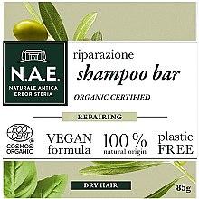 Parfumuri și produse cosmetice Șampon solid pentru păr uscat - N.A.E. Repairing Shampoo Bar
