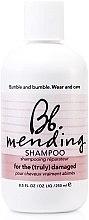 Parfumuri și produse cosmetice Șampon regenerant pentru păr deteriorat - Bumble and Bumble Mending Shampoo