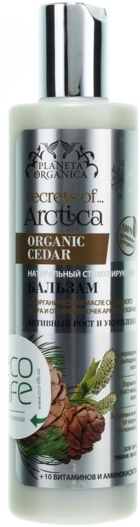 Balsam pentru păr pe bază de ulei de cedru siberian - Planeta Organica — Imagine N1