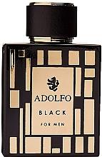 Parfumuri și produse cosmetice Adolfo Dominguez Black for Men - Apă de toaletă