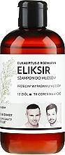 """Parfumuri și produse cosmetice Șampon-elixir de păr """"Eucalipt și rozmarin"""" - WS Academy Eukaliptus & Rozmaryn Elixir Wash"""