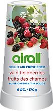 """Parfumuri și produse cosmetice Odorizant solid pentru cameră """"Fructe de pădure"""" - Airall Air Freshener Solid Wild Berries"""