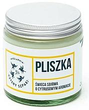 """Parfumuri și produse cosmetice Lumânare aromată """"Motacilla"""" - Cztery Szpaki"""
