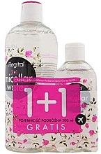 Parfumuri și produse cosmetice Set - Regital (micell/water/400ml + micell/water/100ml)