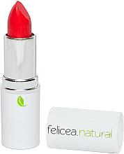 Parfumuri și produse cosmetice Ruj de buze - Felicea Natural Lipstick