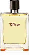 Hermes Terre D'Hermes - Set (edt/100 ml + ash/40 ml + edt/5 ml) — Imagine N5
