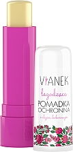 Parfumuri și produse cosmetice Balsam calmant de buze - Vianek Lip Balm