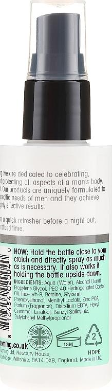 Spray revigorant pentru igiena intimă - Below The Belt Grooming Instant Clean Balls Fresh — Imagine N2