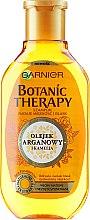 Parfumuri și produse cosmetice Șampon de păr - Garnier Botanic Therapy Argan