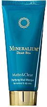 Parfumuri și produse cosmetice Mască de nămol pentru ten normal și gras - Minerallium Purifying Mud Masqu