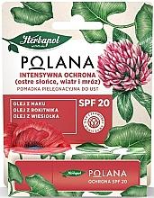 Parfumuri și produse cosmetice Balsam de buze SPF20 - Polana