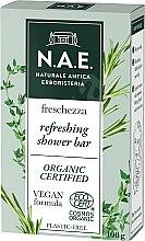 Parfumuri și produse cosmetice Săpun de corp - N.A.E. Refreshing Body Bar