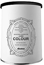Parfumuri și produse cosmetice Pudră iluminatoare - Davines A New Colour Bleaching Powder
