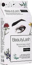 Parfumuri și produse cosmetice Vopsea pentru gene și sprâncene - Beauty Lash Set