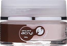 Parfumuri și produse cosmetice Gel acrilic, 12 g - Silcare Sequent Acryl