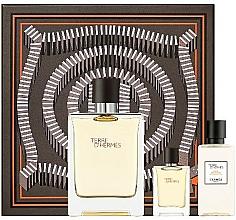 Parfumuri și produse cosmetice Hermes Terre D'Hermes - Set (edt/100 ml + ash/40 ml + edt/5 ml)