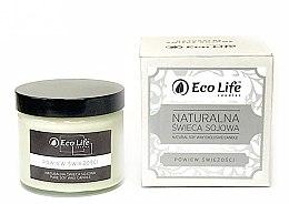 """Parfumuri și produse cosmetice Lumânare parfumată """"Prospețime"""" - Eco Life Candles"""