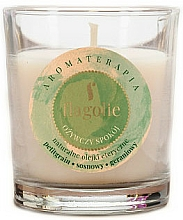 "Parfumuri și produse cosmetice Lumânare aromatică ""Refreshing"" - Flagolie Fragranced Candle Refreshing Peace"