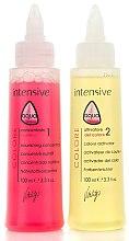 Parfumuri și produse cosmetice Stabilizator de culoare cu keratină - Vitality's Aqua After-colour Keratin Treatment