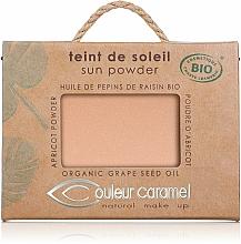 Parfumuri și produse cosmetice Pudră compactă - Couleur Caramel Sun Powder