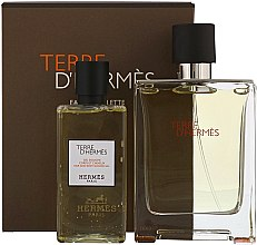 Parfumuri și produse cosmetice Hermes Terre dHermes - Set (edt/100ml + sh/g/80ml)