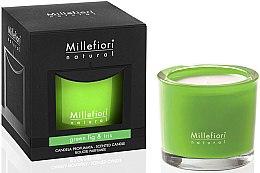 """Parfumuri și produse cosmetice Lumânare aromatică """"Smochine și Iris"""" - Millefiori Milano Natural Candle Green Fig & Iris"""