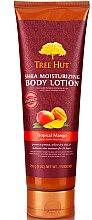 "Parfumuri și produse cosmetice Loțiune pentru corp""Mango tropical"" - Tree Hut Shea Moisturizing Body Lotion"