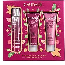 Parfumuri și produse cosmetice Set - Caudalie The Des Vignes Scented Trio (edp/50ml + sh/gel/50ml + b/lot/50ml)