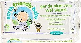 Parfumuri și produse cosmetice Șervețele umede pentru copii - Earth Friendly Baby Aloe Vera Wet Wipes