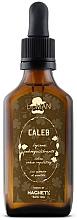 Parfumuri și produse cosmetice Loțiune pentru reglarea secreției de sebum a scalpului și îngrijirea părului gras - BioMan Caleb Sebum Balancing Lotion