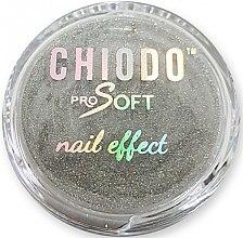 Parfumuri și produse cosmetice Pudră holografică de unghii - Chiodo Pro Soft