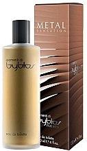 Parfumuri și produse cosmetice Byblos Metal Sensation - Apă de toaletă