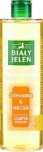 Parfumuri și produse cosmetice Șampon cu extract de cătină pentru păr - Bialy Jelen