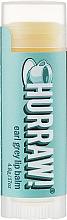 "Parfumuri și produse cosmetice Balsam de buze ""Earl Grey"" - Hurraw! Earl Grey Lip Balm"