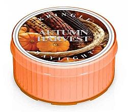 Parfumuri și produse cosmetice Lumânare aromată - Kringle Candle Autumn Harvest Daylight