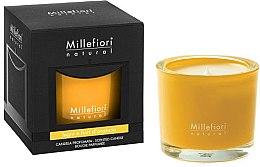 """Parfumuri și produse cosmetice Lumânare aromatică """"Pădure și Flori sălbatice"""" - Millefiori Milano Natural Candle Legni e Fiori D'Arancio"""