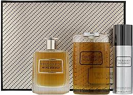 Parfumuri și produse cosmetice Trussardi Riflesso Man Set - Set (edt/100ml + sh/g/200ml + deo/100)