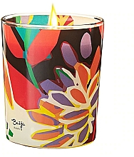 Parfumuri și produse cosmetice Lumânare aromată - Baija Vertige Solaire Scented Candle