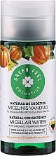 Parfumuri și produse cosmetice Apă micelară cu extract de dovleac - Green Feel's Micellar Water
