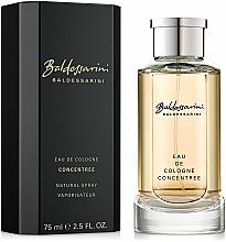 Parfumuri și produse cosmetice Baldessarini Concentree - Apă De Colonie (Concentrat)
