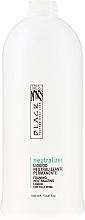 Parfumuri și produse cosmetice Neutralizant Fixator - Black Professional Line Neutralizer