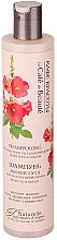 """Parfumuri și produse cosmetice Șampon pentru uz frecvent """"Îngrijire delicată. Luminozitate și volum"""" - Le Cafe de Beaute Shampoo Soft Care"""
