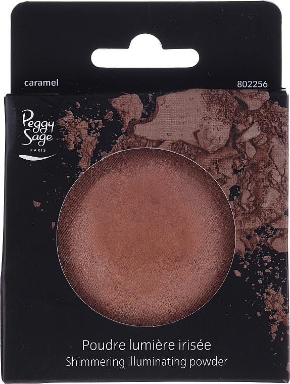 Bronzer pentru față - Peggy Sage Shimmering Illuminating Powder (rezervă) — Imagine N1