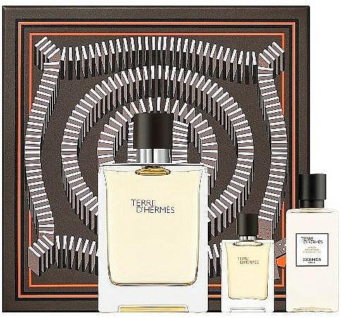 Hermes Terre D'Hermes - Set (edt/100 ml + ash/40 ml + edt/5 ml) — Imagine N1