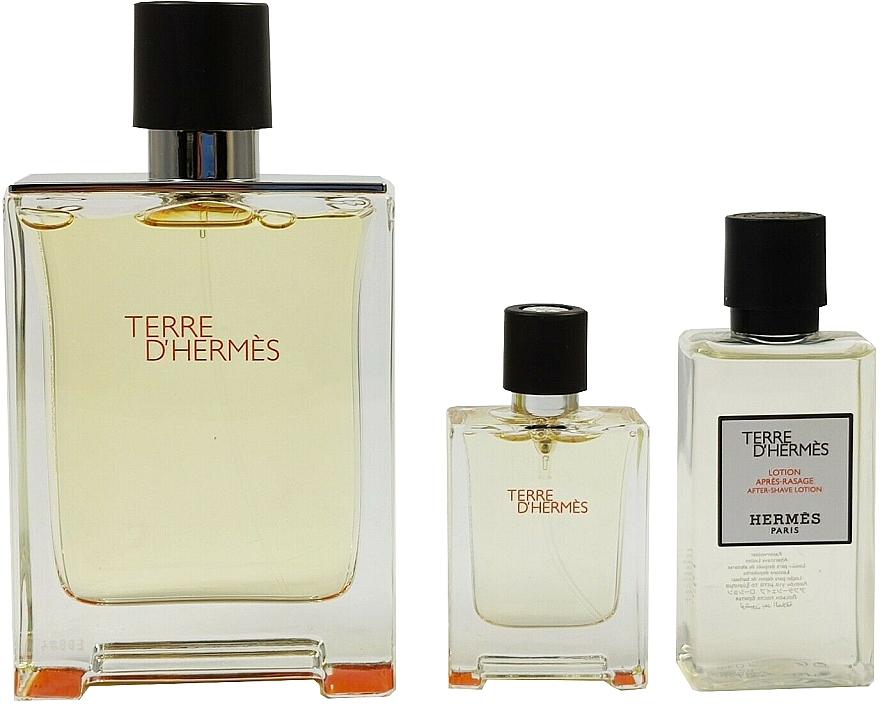 Hermes Terre D'Hermes - Set (edt/100 ml + ash/40 ml + edt/5 ml) — Imagine N4