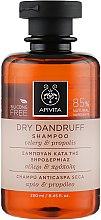 Parfumuri și produse cosmetice Șampon împotriva mătreții - Apivita Shampoo For Dry Dandruff With Celery Propolis