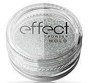 Parfumuri și produse cosmetice Pudră pentru unghii - Ronney Professional Holo Effect Nail Art Powder